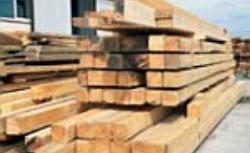 Drewno na więźbę